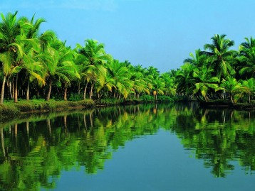 COCHIN / KUMARAKOM / ALLEPPEY / KOVALAM 6 DAYS/ 5 NIGHTS