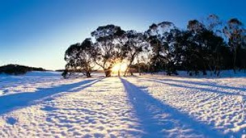 Australia Bonanza  – For Creating Lovely memories